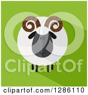 Clipart Of A Modern Flat Design Round Fluffy Black Ram Sheep With A Shadow On Green Royalty Free Vector Illustration by Hit Toon