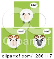 Modern Flat Designs Of Round Fluffy White And Black Baaing Sheep And Rams Over Green Tiles