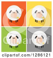 Clipart Of Modern Flat Designs Of Round Fluffy White Sheep With Shadows Over Colorful Tiles Royalty Free Vector Illustration