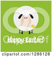 Clipart Of A Modern Flat Design Round Fluffy Sheep Eating A Flower Over Happy Easter Text On Green Royalty Free Vector Illustration