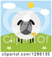 Clipart Of A Modern Flat Design Round Fluffy Black Sheep Eating A Flower On A Hill Royalty Free Vector Illustration