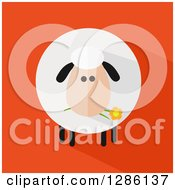 Clipart Of A Modern Flat Design Round Fluffy Sheep Eating A Daisy Flower With A Shadow On Orange Royalty Free Vector Illustration