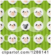 Clipart Of A Background Pattern Of Modern Flat Designed Fluffy Black And White Sheep Over Green Stripes Royalty Free Vector Illustration