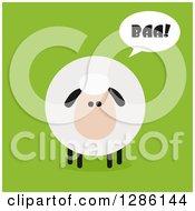 Modern Flat Design Round Fluffy Sheep Saying Baa On Green