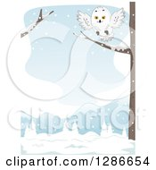 Clipart Of A Snowy Owl Landing On A Tree Branch In A Winter Landscape Royalty Free Vector Illustration by BNP Design Studio