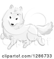 Clipart Of A Cute White Arctic Fox Walking Royalty Free Vector Illustration by BNP Design Studio