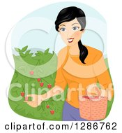 Clipart Of A Happy Asian Woman Picking Raspberries From A Bush Royalty Free Vector Illustration by BNP Design Studio