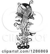 Clipart Of A Black And White Woodcut Earth On Top Of A Beanstalk Royalty Free Vector Illustration