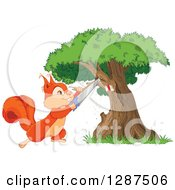 Cute Happy Squirrel Sawing A Branch Off Of A Marked Tree