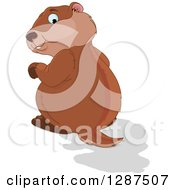 Clipart Of A Cute Groundhog Looking Back At His Shadow Royalty Free Vector Illustration