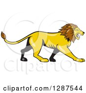Clipart Of A Cartoon Roaring Male Lion Walking In Profile Royalty Free Vector Illustration