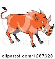 Clipart Of A Cartoon Wild Razorback Boar Pig Royalty Free Vector Illustration