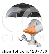 Clipart Of A 3d White Duck Holding A Black Umbrella Over A Sign Royalty Free Illustration