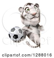 Clipart Of A 3d White Tiger Holding A Soccer Ball Around A Sign Royalty Free Illustration