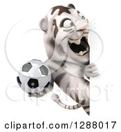 Clipart Of A 3d White Tiger Roaring And Holding A Soccer Ball Around A Sign Royalty Free Illustration
