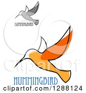 Clipart Of Sketched Grayscale And Orange Hummingbirds With Text Royalty Free Vector Illustration