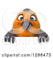 Clipart Of A 3d Red Robin Bird Over A Sign Royalty Free Illustration