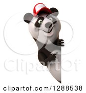 Clipart Of A 3d Panda Wearing A Baseball Cap And Pointing Around A Sign Royalty Free Illustration