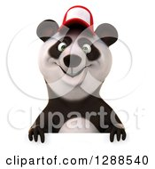 Clipart Of A 3d Panda Wearing A Baseball Cap Over A Sign Royalty Free Illustration