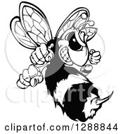 Clipart Of A Black And White Aggressive Stinging Hornet Mascot Royalty Free Vector Illustration by Chromaco