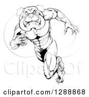 Black And White Muscular Tough Bulldog Man Mascot Sprinting Upright