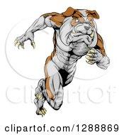 Clipart Of A Muscular Tough Bulldog Man Mascot Sprinting Upright Royalty Free Vector Illustration