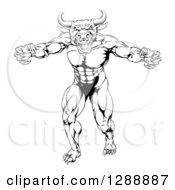 Black And White Snarling Bull Man Minotaur Monster Mascot Attacking