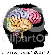 Clipart Of A Black Silhouetted Mans Head In Profile With A Visual Brain Showing Different Colored Sections Royalty Free Vector Illustration