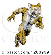 Clipart Of An Aggressive Muscular Wildcat Man Sprinting Royalty Free Vector Illustration by AtStockIllustration