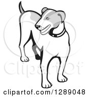 Clipart Of A Retro Grayscale Cartoon Jack Russell Terrier Dog Royalty Free Vector Illustration