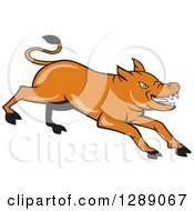Clipart Of A Cartoon Charging Angry Brown Pig Royalty Free Vector Illustration