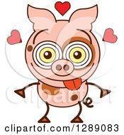 Smitten And Amorous Pig In Love