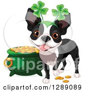 Animal Clipart Of A Cute St Patricks Day Boston Terrier Dog Wearing A Shamrock Headband By A Pot Of Gold Royalty Free Vector Illustration