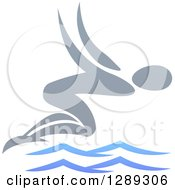 Gray Swimmer Diving Over Blue Waves