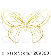 Clipart Of A Gradient Dark Yellow Butterfly Royalty Free Vector Illustration by AtStockIllustration