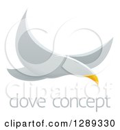 Clipart Of A Flying White Dove Over Sample Text Royalty Free Vector Illustration