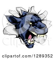 Clipart Of A Fierce Black Panther Breaking Through A Wall Royalty Free Vector Illustration