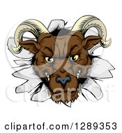Clipart Of A Brown Snarling Angry Ram Breaking Through A Wall Royalty Free Vector Illustration by AtStockIllustration