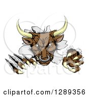 Clipart Of A Mad Aggressive Bull Monster Clawing Through A Wall Royalty Free Vector Illustration