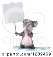 Clipart Of A 3d Koala Holding And Pointing To A Blank Sign And Surfing Royalty Free Illustration