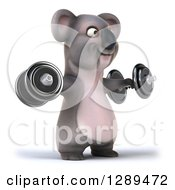 Clipart Of A 3d Koala Facing Slightly Right Exercising And Doing Lateral Raises With Dumbbell Weights Royalty Free Illustration