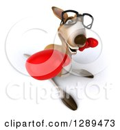 Clipart Of A 3d Bespectacled Fighter Kangaroo Punching Upwards And Wearing Boxing Gloves 2 Royalty Free Illustration
