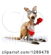 Clipart Of A 3d Bespectacled Fighter Kangaroo Waving And Wearing Boxing Gloves Royalty Free Illustration