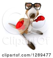 Clipart Of A 3d Bespectacled Fighter Kangaroo Punching Upwards And Wearing Boxing Gloves Royalty Free Illustration