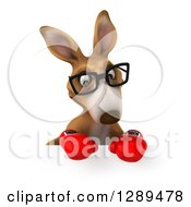 Clipart Of A 3d Bespectacled Fighter Kangaroo Wearing Boxing Gloves And Looking Down Over A Sign Royalty Free Illustration