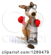 Clipart Of A 3d Bespectacled Fighter Kangaroo Wearing Boxing Gloves And Waving Around A Sign Royalty Free Illustration