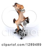 Clipart Of A 3d Happy Brown Horse Exercising On A Spin Bike Royalty Free Illustration