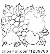 Clipart Of A Black And White Design Of A Pear Apricots Pomegranate And Grapes On Leaves Royalty Free Vector Illustration