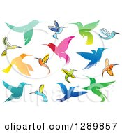 Clipart Of Colorful Gradient And Sketched Hummingbirds Royalty Free Vector Illustration