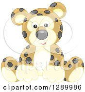 Clipart Of A Cute Sitting Leopard Stuffed Animal Toy Royalty Free Vector Illustration